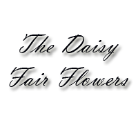 The Daisy Fair Flowers