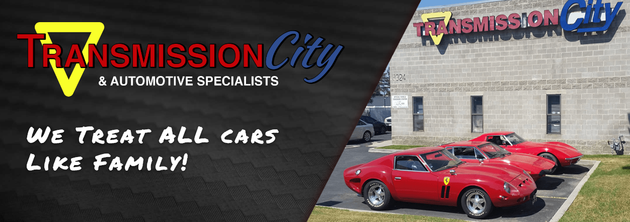 Transmission City & Automotive Specialists treat all cars like family