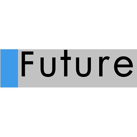 Future Insurance Agency, Inc.
