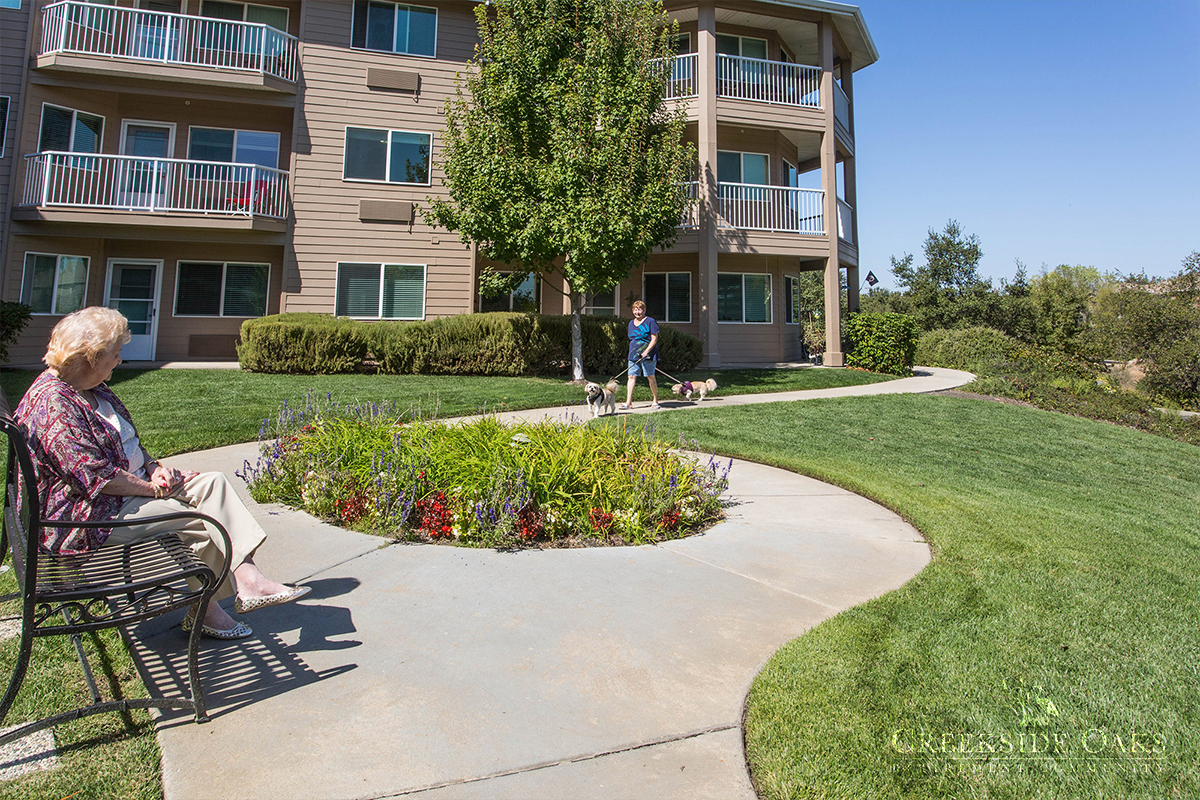 creekside senior personals Contact us today our friendly, professional team is ready to help you move in and experience creekside village, a different kind of senior living experience.