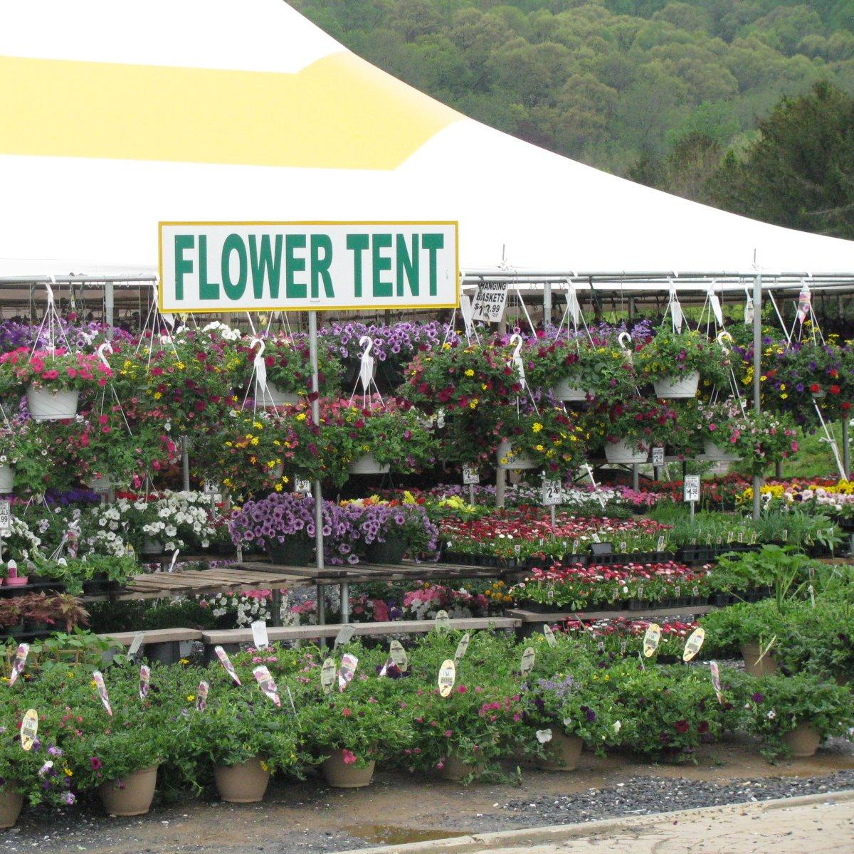 Flower Tent - Wyoming, PA - Florists