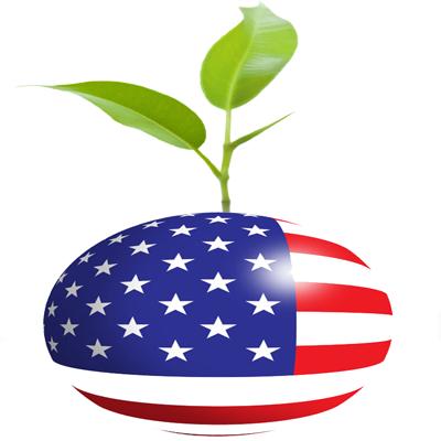 American Seed Company