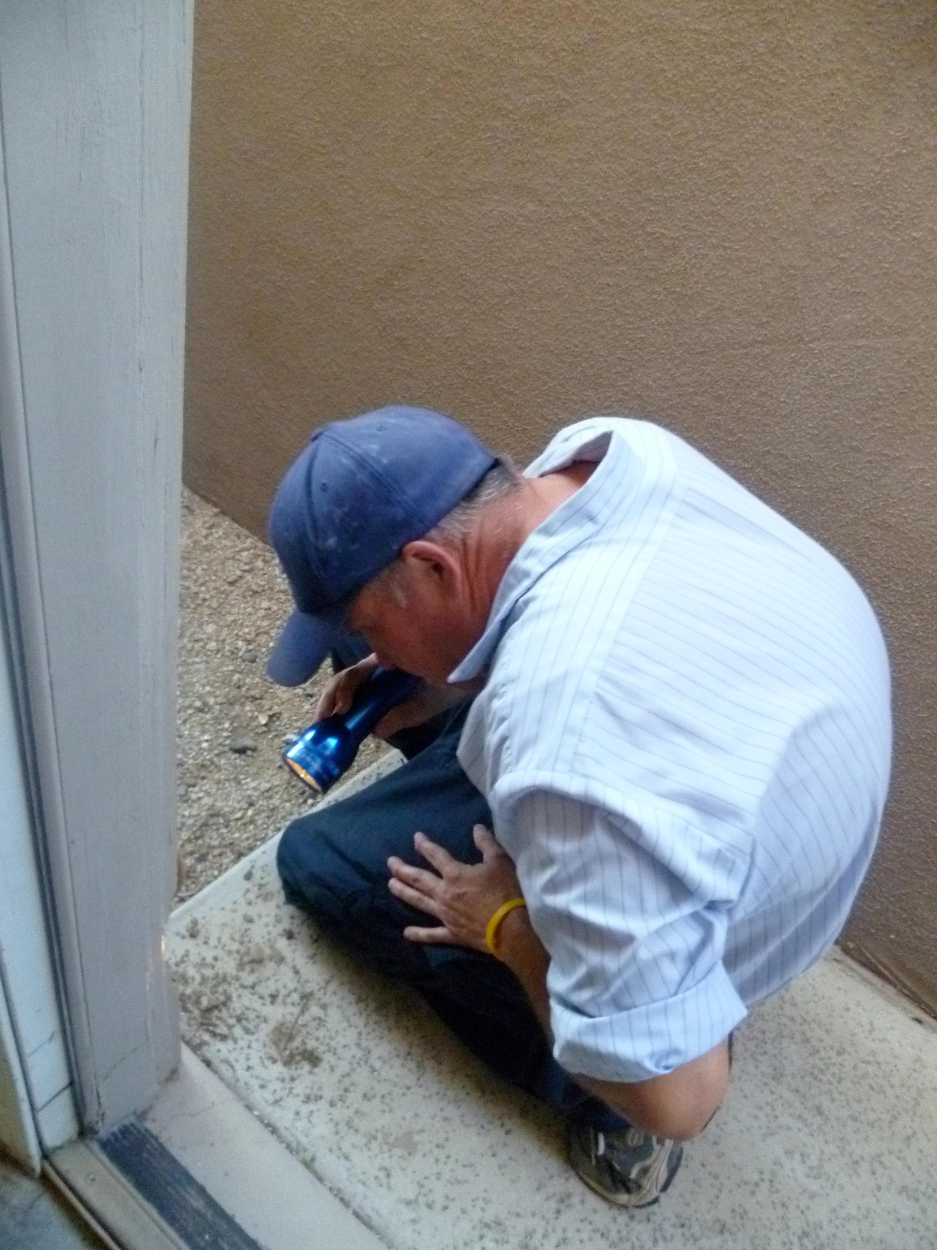 Action Termite & Pest Control image 4