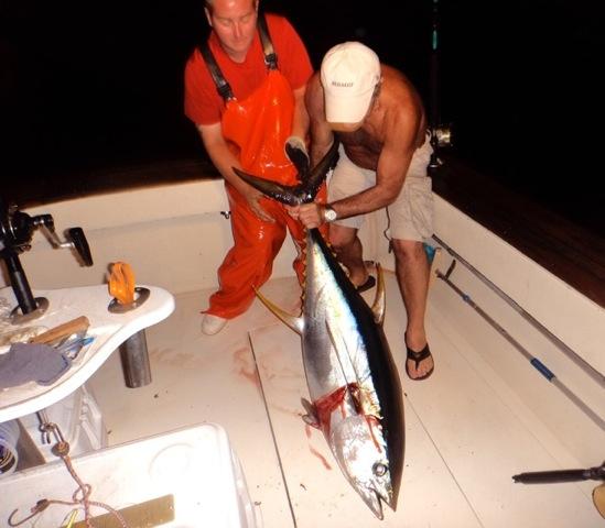 Captain Art's Fishing Charters image 2
