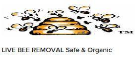 Bee Removal Specialist image 0