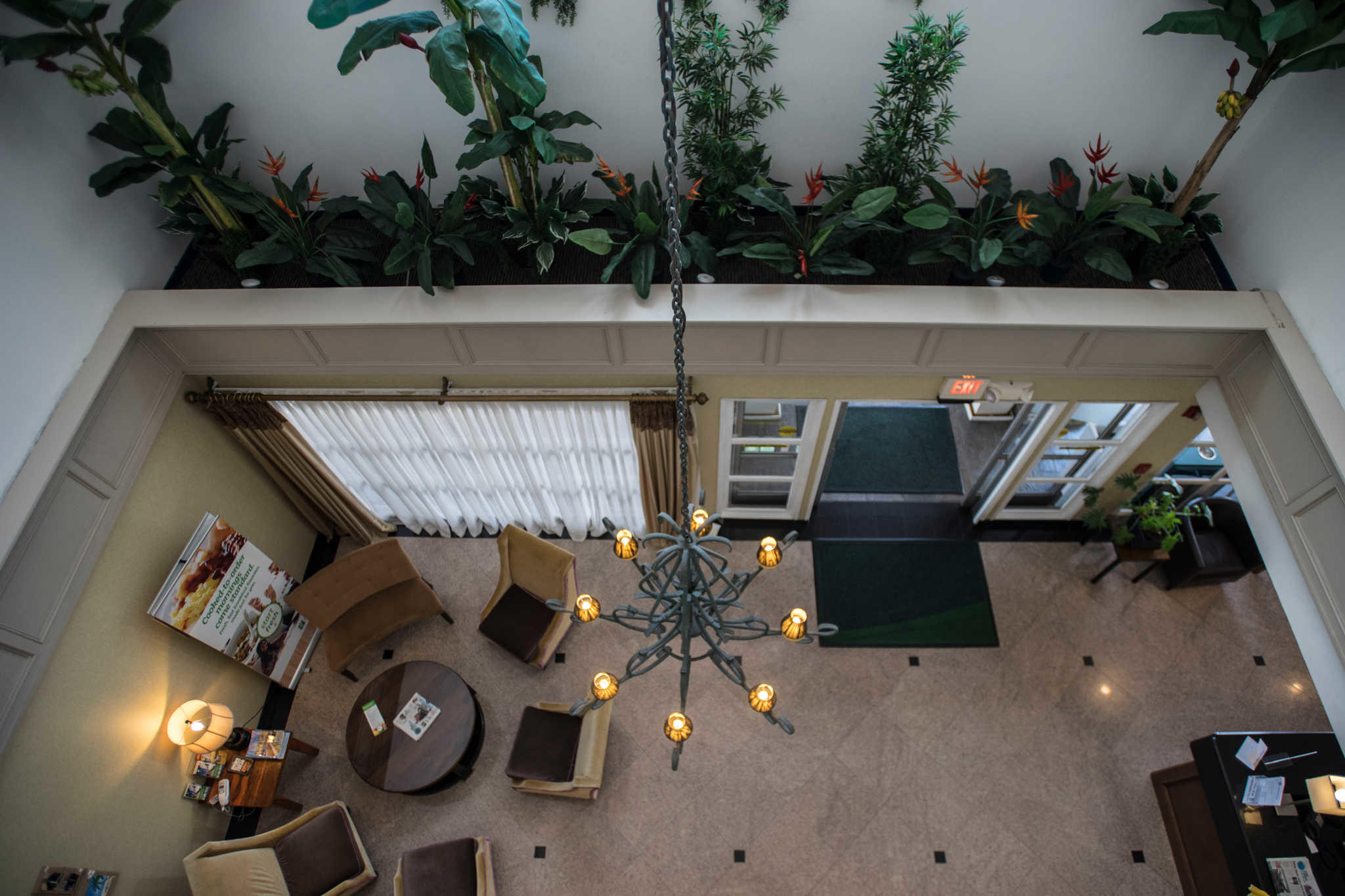 The Volare, an Ascend Hotel Collection Member image 5
