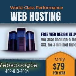 Web Hosting $79 per year. All of our hosting comes with email, easy site builder, and uptime 99.9%!