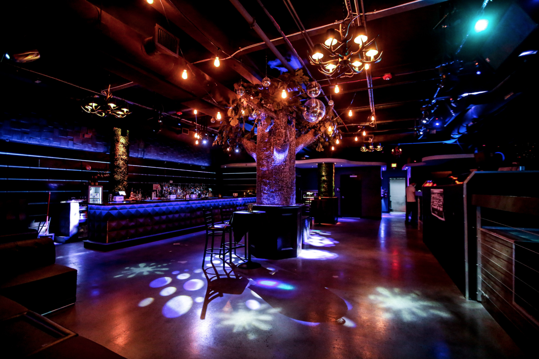 Element Bistro Bar and Lounge image 4