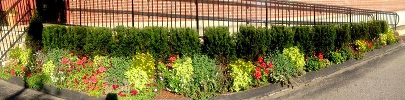 Currier Landscaping image 2
