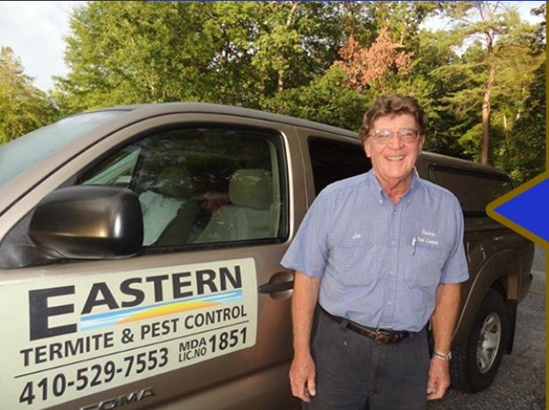 Eastern Termite & Pest Control image 0
