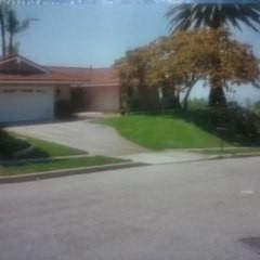 Josue's Landscaping & Tree Service image 3