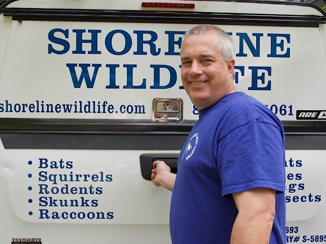 Shoreline Wildlife and Pest Control llc image 2