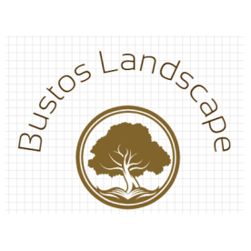 Bustos Landscape