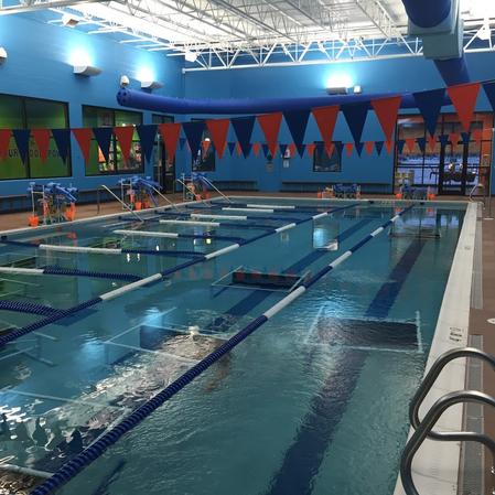 Bear Paddle Swim School In Aurora Il 60504 Citysearch