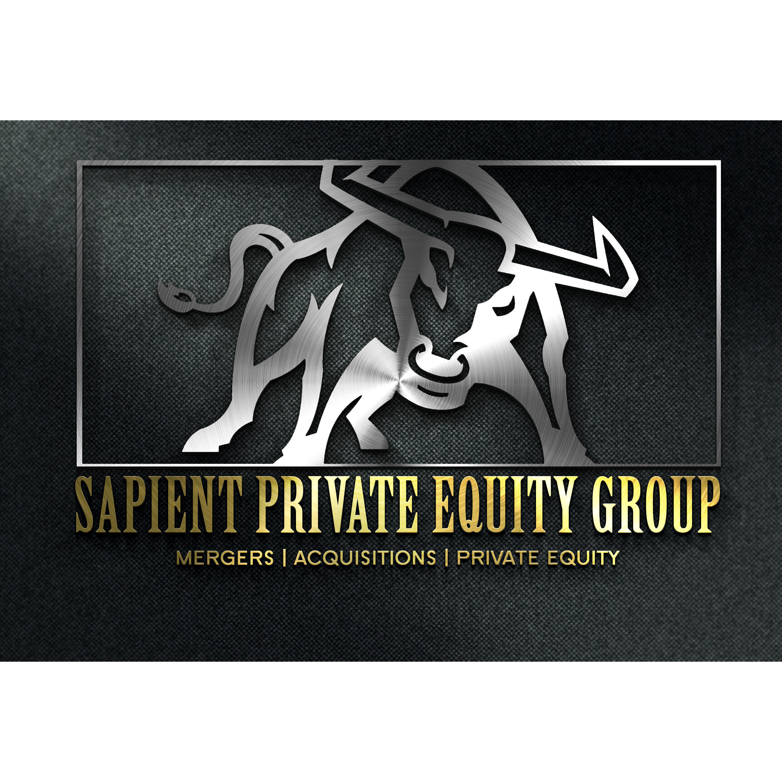 Sapient Private Equity Group, Inc image 4