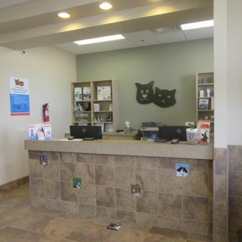La Sendas Animal Hospital & Grooming image 1