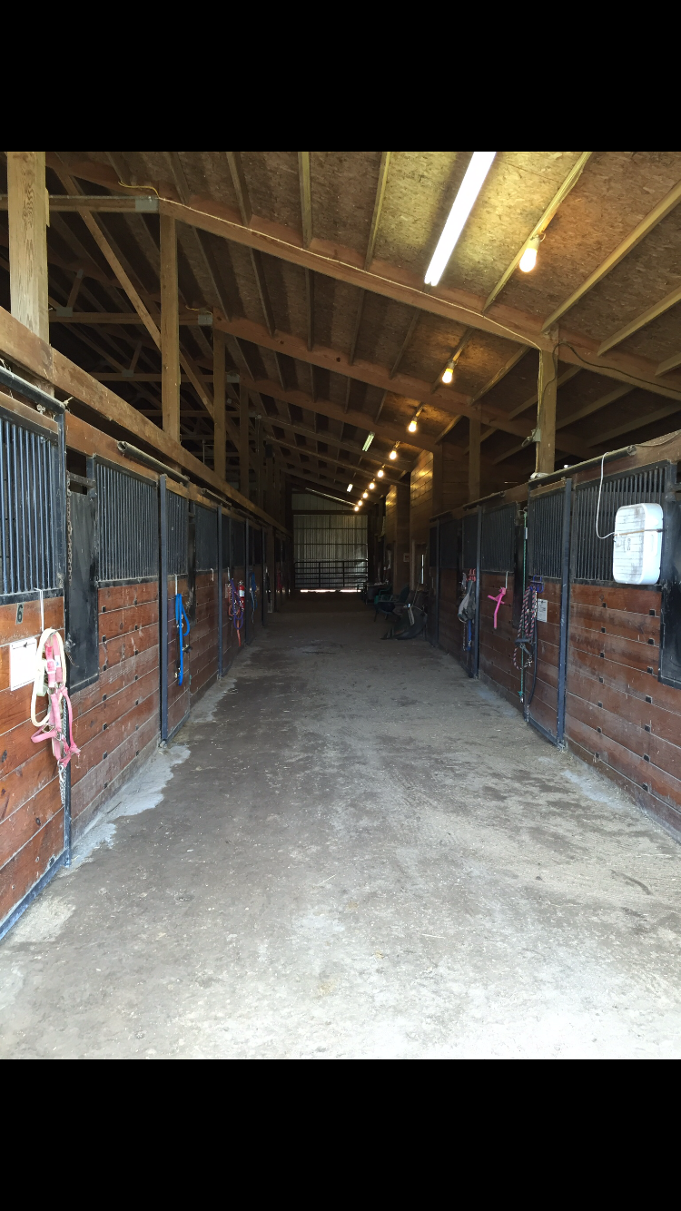 Bravo Equestrian Center image 2