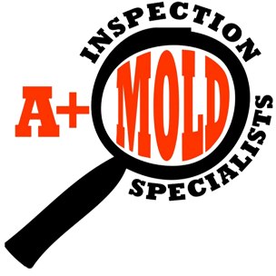 A+ Mold Inspection Specialists LLC image 8