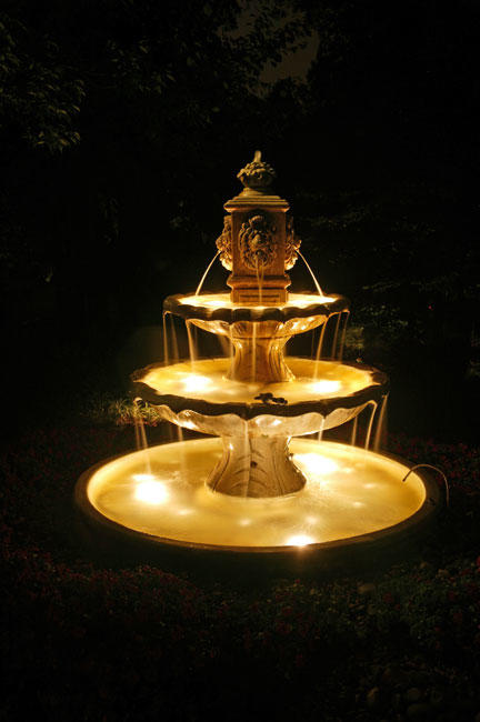 Dusk to Dawn Landscape Lighting image 5