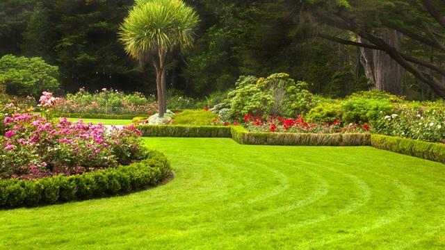 Yardley Hastings Garden Centre