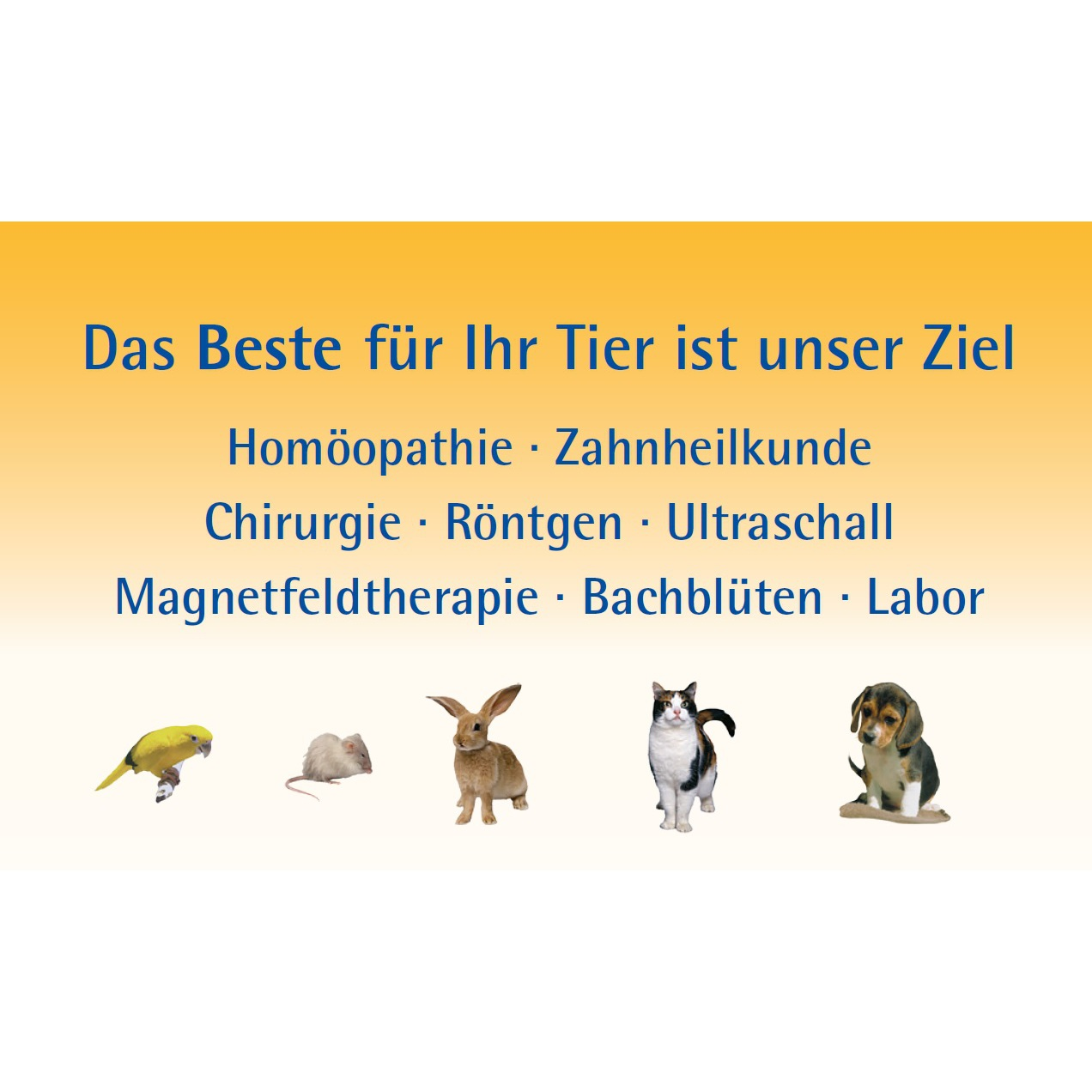 Logo von Tierarztpraxis Dr. med. vet. Ute Lederer