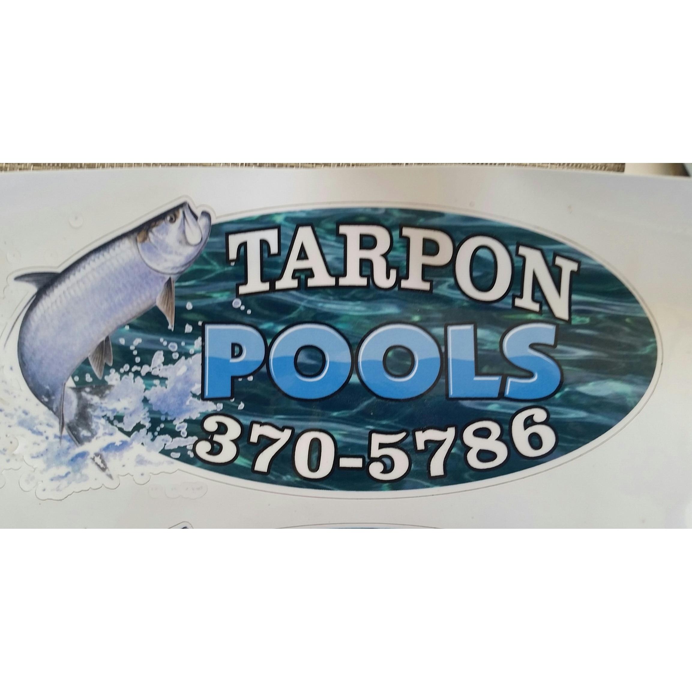 TARPON POOLS AND PATIO SERVICE LLC image 0