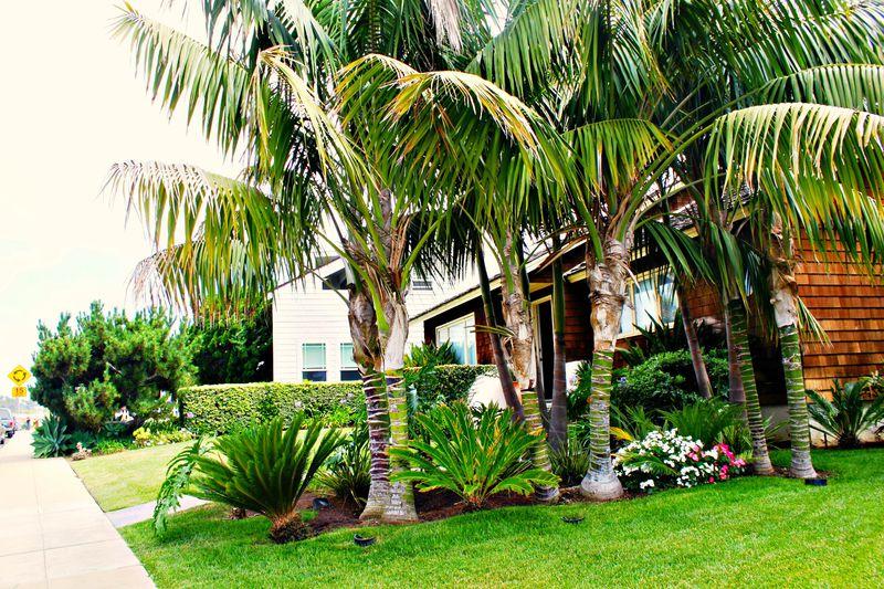 La Jolla Vacation Rentals image 1