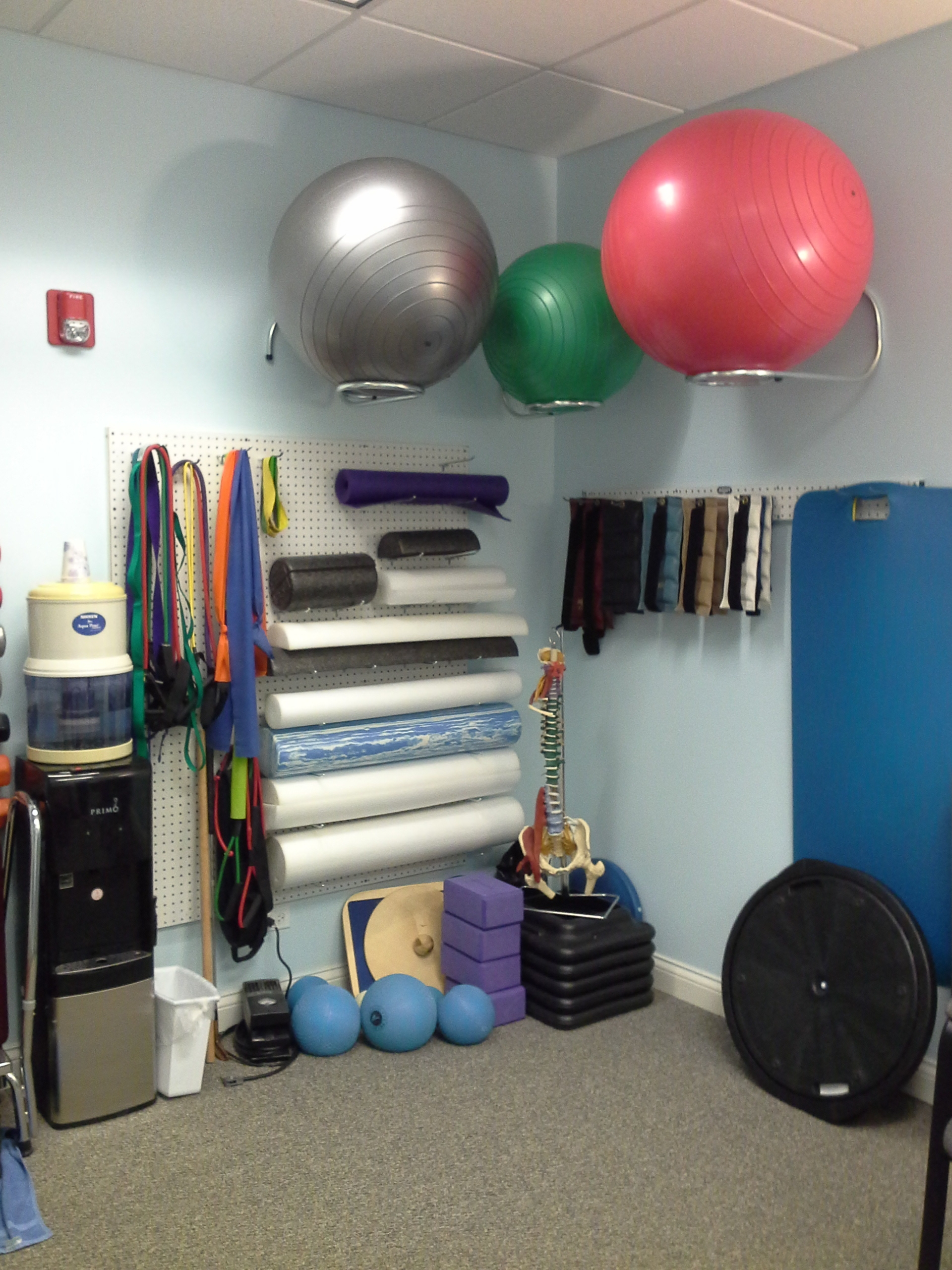Living Well Physical Therapy in Mundelein, IL, photo #3