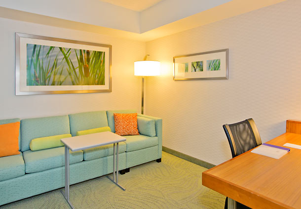 SpringHill Suites by Marriott Pittsburgh North Shore image 4