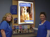 Image 6 | VCA Knightswood Animal Hospital