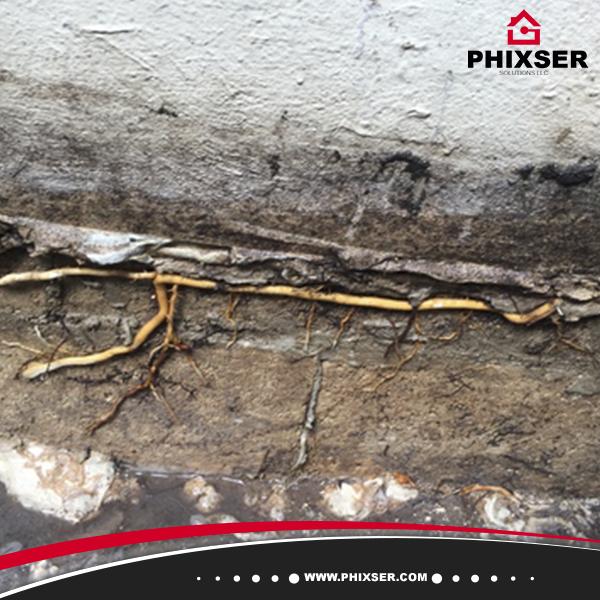 Phixser Solutions LLC image 15