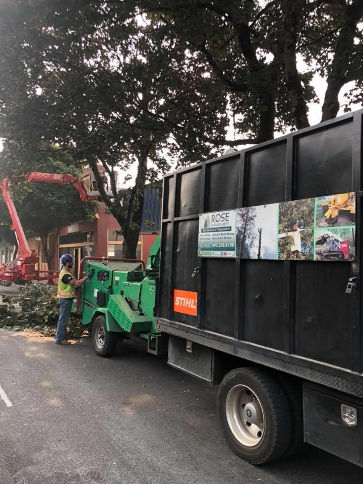 Rose Tree Service & Vegetation Management, LLC image 2