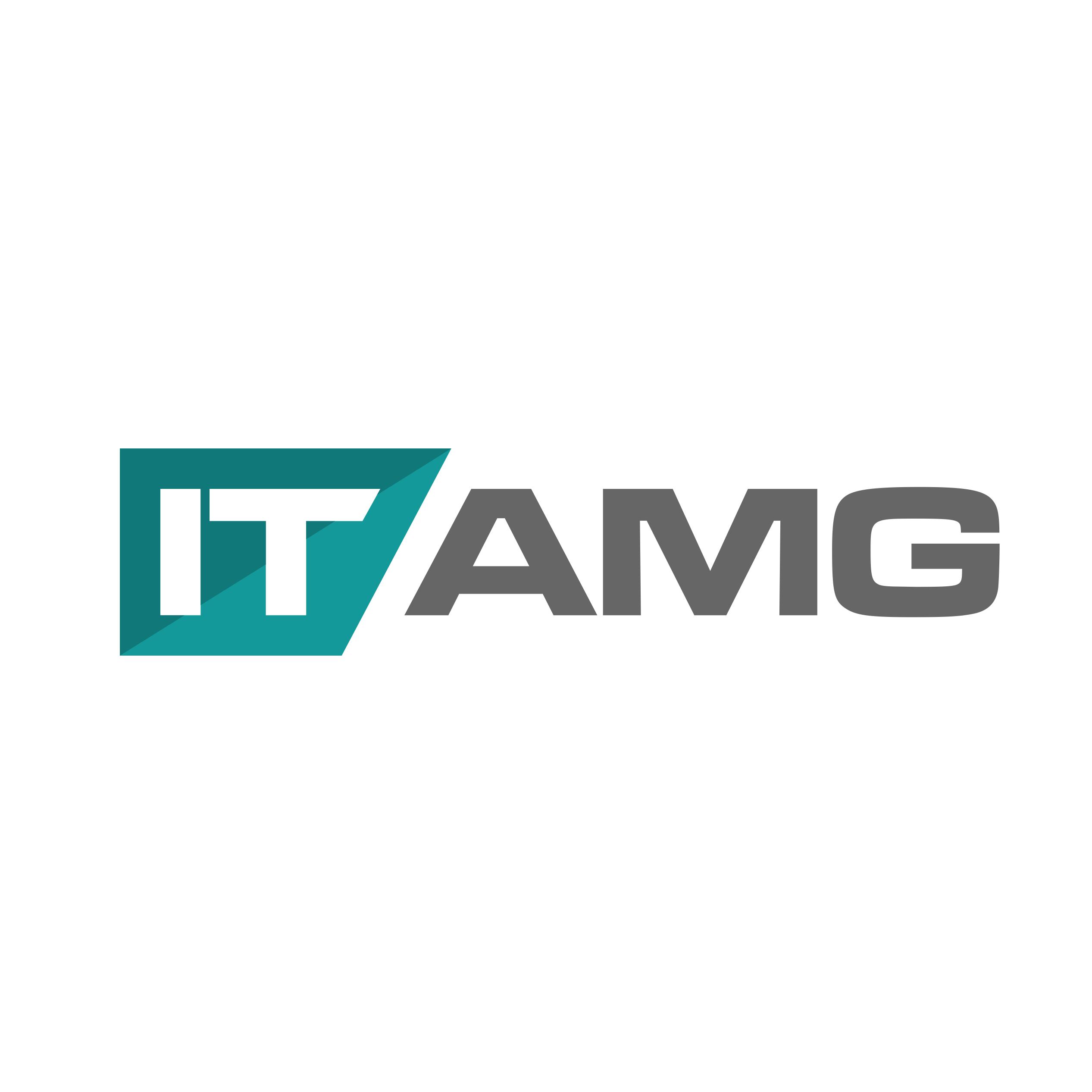 IT Asset Management Group