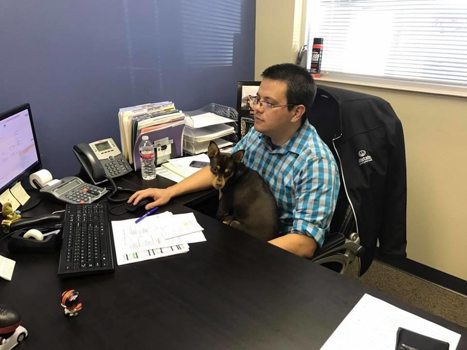 Allstate Insurance Agent: Daniel Cheek image 7