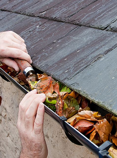 Gutters & Downspouts - Cleaning in Billericay, ESSEX Billeri