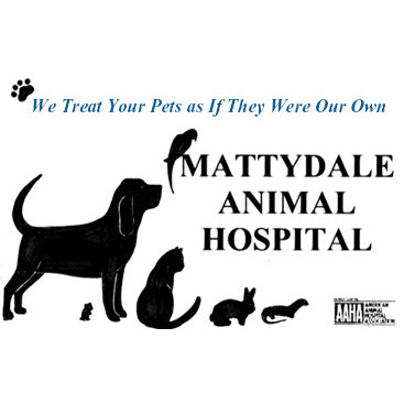 Mattydale Animal Hospital image 8