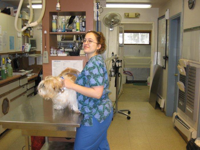 VCA East Anchorage Animal Hospital image 4