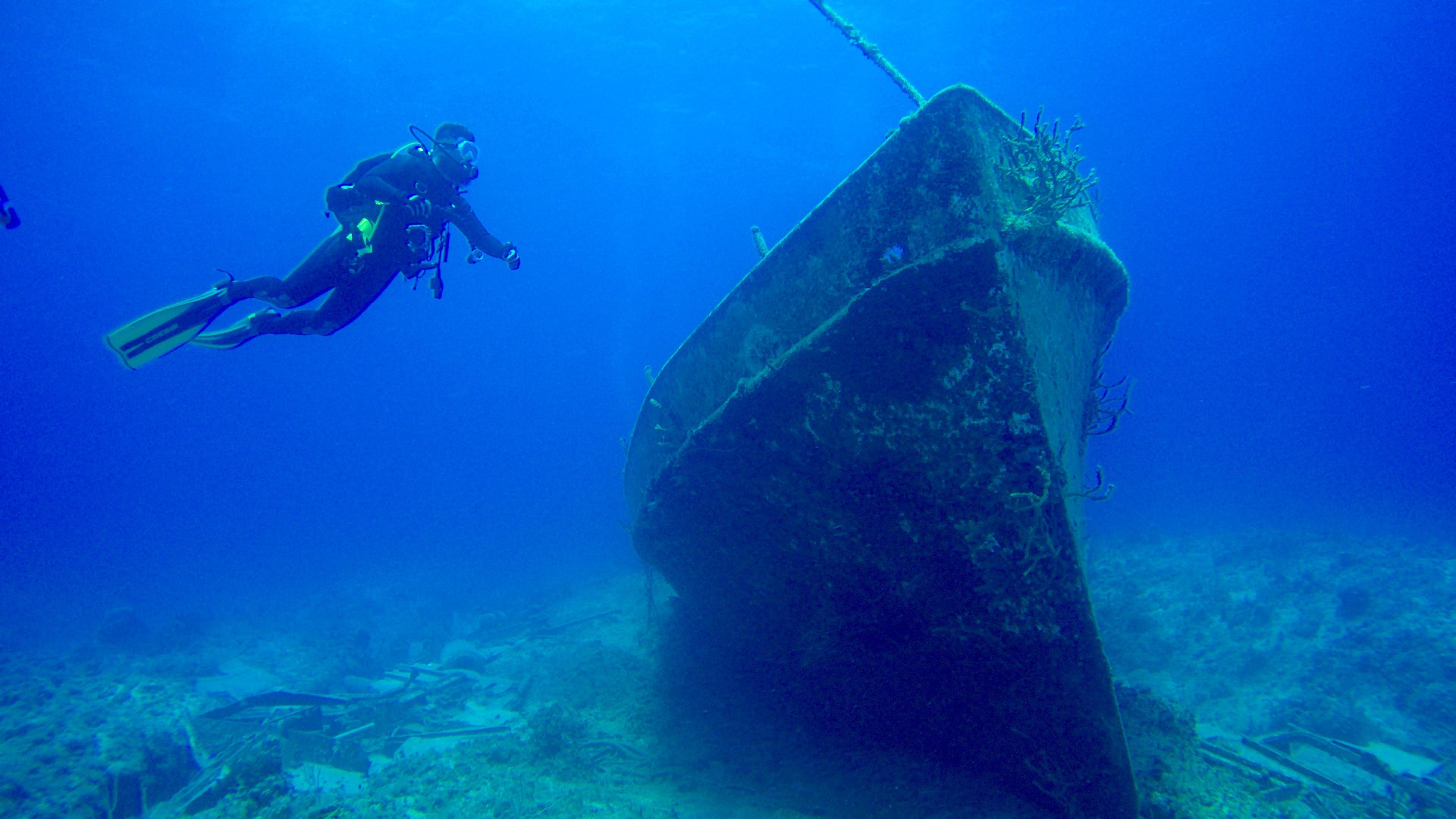 Underwater World Inc. image 5