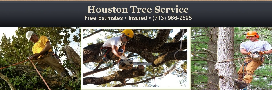 Houston Tree Service image 12