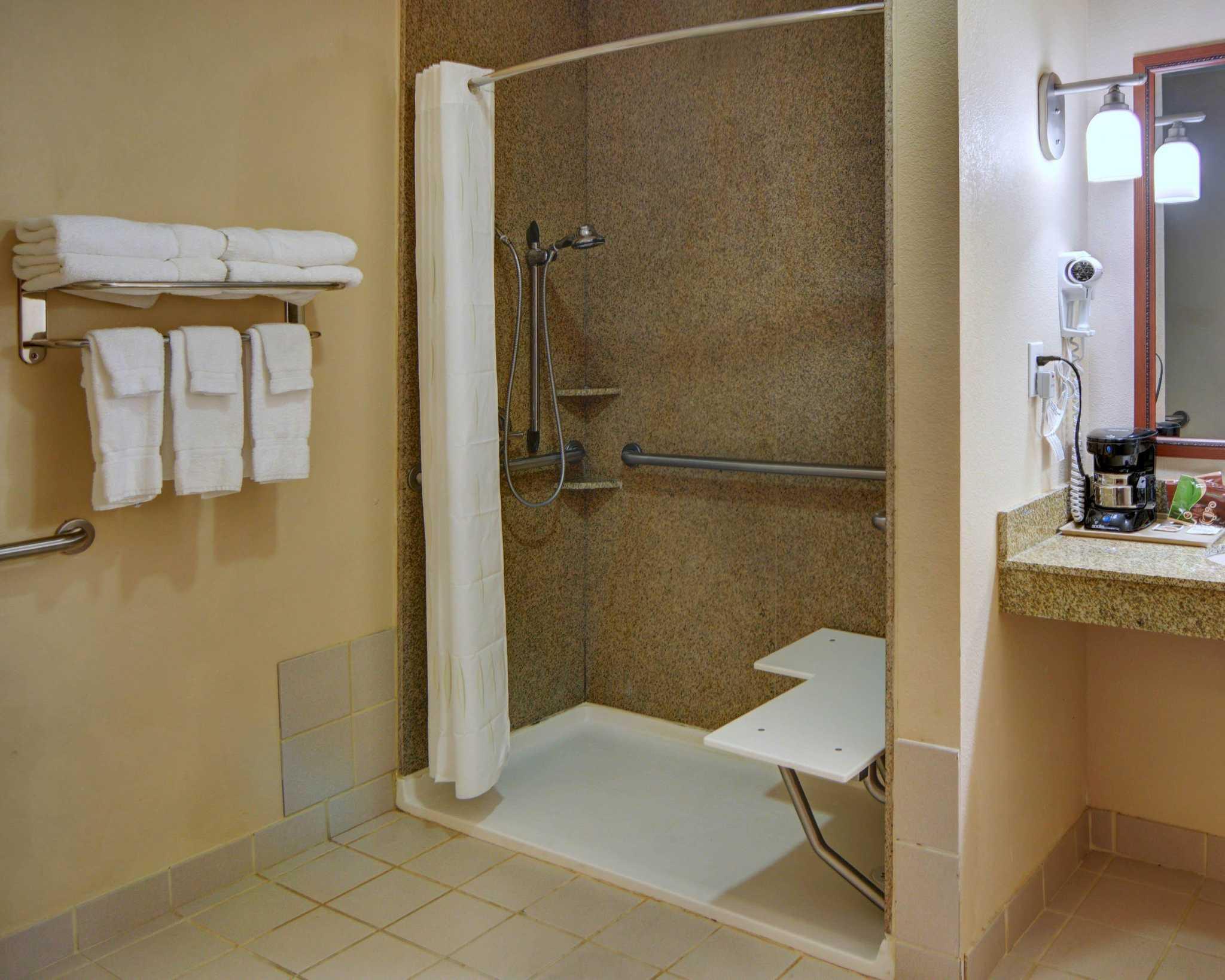 Comfort Suites Near Cedar Creek Lake image 5