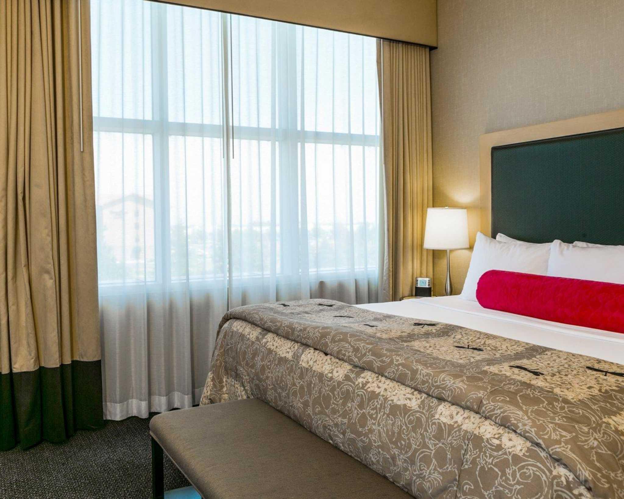 Cambria Hotel Denver International Airport image 9