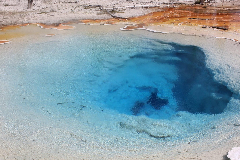 Yellowstone Tours From Jackson Hole image 3