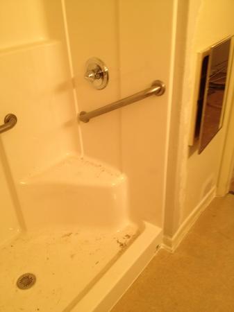 Image 4 | AvantGarde Plumbing And Drain
