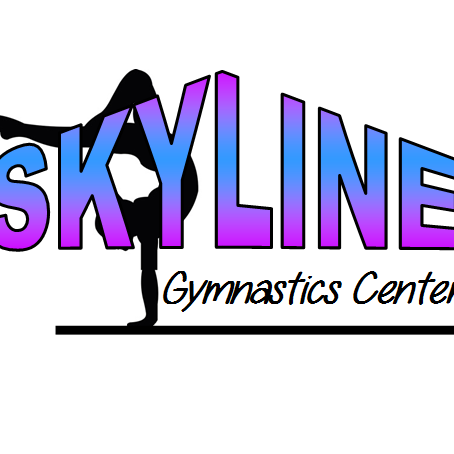 Skyline Gymnastics Center Limited - York, PA - Sports Clubs