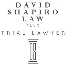 David Shapiro Law, PLLC image 0