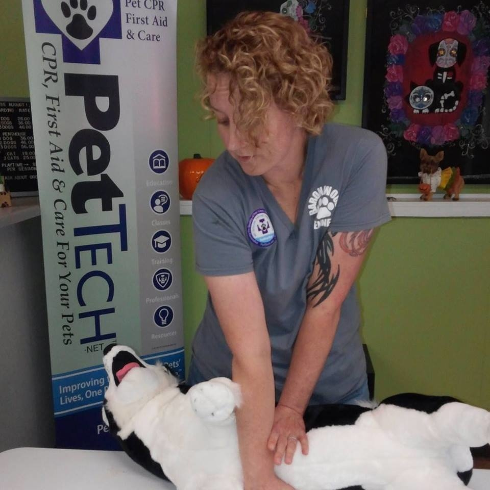 Midwest Pet CPR and First Aid image 1