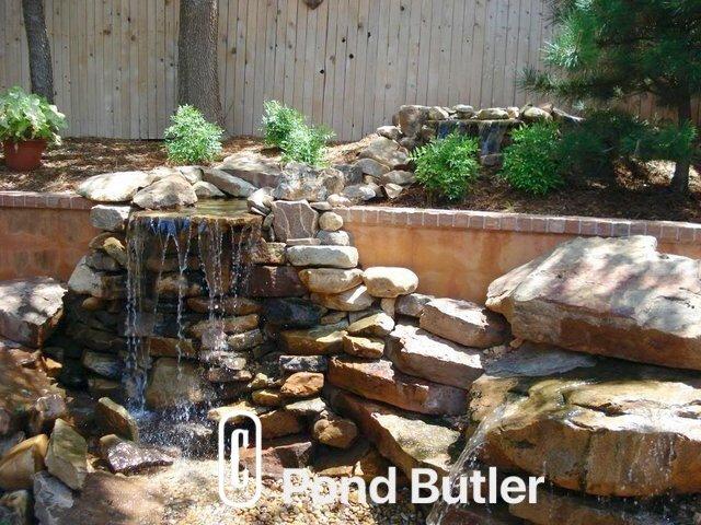 Pond Butler image 2