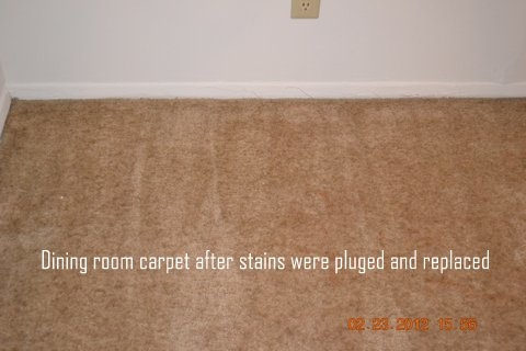 Capital Area Carpet Cleaners image 1