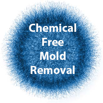 Breathe Easy Mold Remediation Inc image 1
