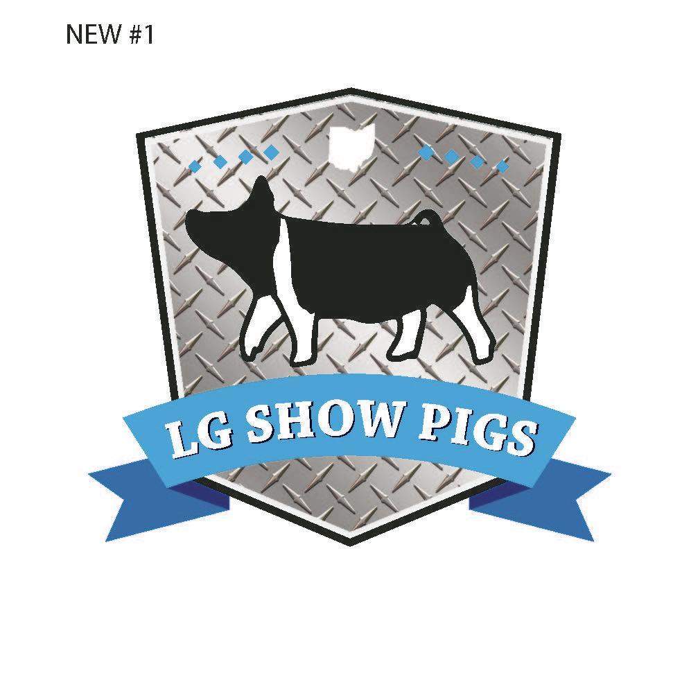 LG Show Pigs image 0